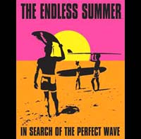 THE ENDLESS SUMMER SURF VAGUE SPOT BIARRITZ   Plaque métal style